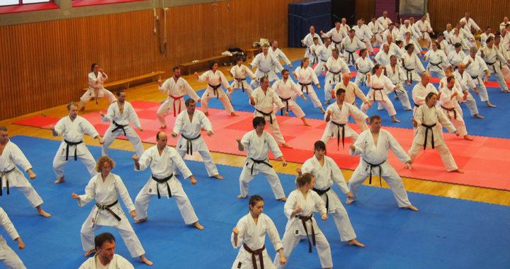 Großes Karate-Trainermeeting im TSC