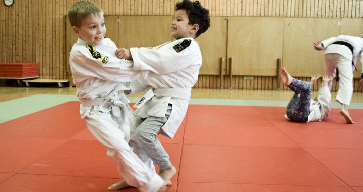 Judoabteilung nimmt Training wieder auf
