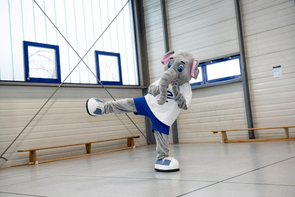 Karate-Abteilung prüft Blau- bis Weißgurte online
